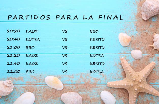 PARTIDOS PARA LA FINAL.png